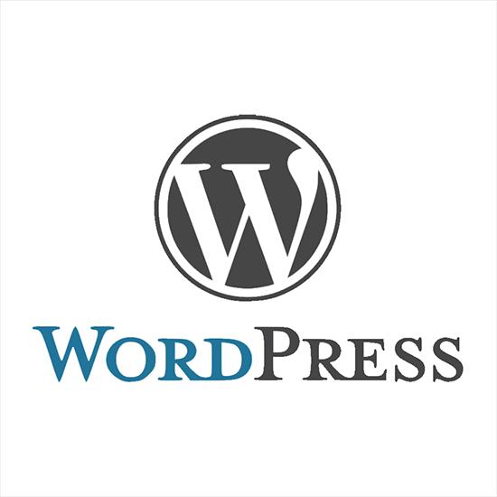 Upcoming WordPress guides 2